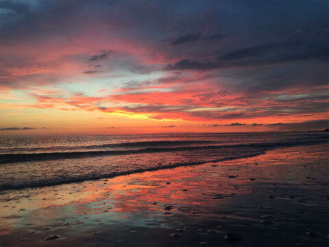 Why you Should Visit St. Pete Beach